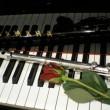 piano_flute pic