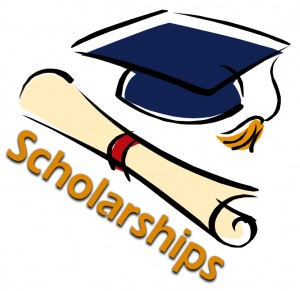 scholly scholarships net worth